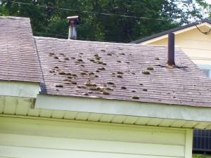 Deferred maintenance on roof in Birmingham, AL