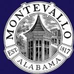 montevallo alabama sales statistics 2011